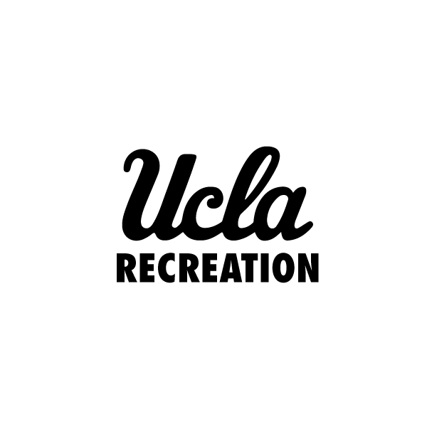 overlay_image